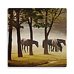 Thirstystone® Dolomite Kentucky Horses in the Mist Single Round Coaster