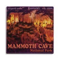 Thirstystone® Dolomite Mammoth Cave National Park Single Round Coaster