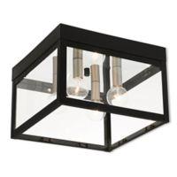 Livex Lighting® Nyack 4-Light Ceiling-Mount Outdoor Light in Black