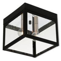 Livex Lighting® Nyack 2-Light Ceiling-Mount Outdoor Light in Black