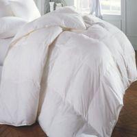 Emily Madison Allegra Year-Round Premium Down Twin Comforter in White