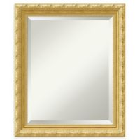 Amanti Art Versailles Medium Bathroom Mirror in Gold