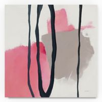 Trademark Fine Art Somersault I 35-Inch Square Canvas Wall Art