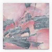 Trademark Fine Art Whitewashed Blush III 35-Inch Square Canvas Wall Art