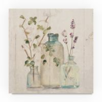 "Cheri Blum ""Blossoms on Birch V"" 14-Inch x 14-Inch Canvas Wall Art"