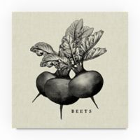 "Trademark Fine Art ""Beets"" 14-Inch Square Canvas Wall Art"