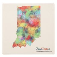 Thirstystone® Indiana State Map Single Coaster