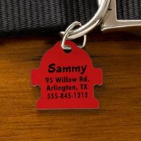 You-Name-It Fire Hydrant Dog ID Tag