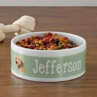 Top Dog Breeds Large Pet Bowl