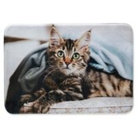 Whimsical Whiskers 1'6 x 2'6 Main Coon Rug