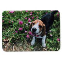 Pets@Heart Barkley 30-Inch x 42-Inch Beagle Door Mat