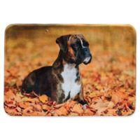 Pets@Heart Barkley 30-Inch x 42-Inch Boxer Door Mat