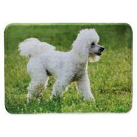 Pets@Heart Barkley 30-Inch x 42-Inch Poodle Door Mat