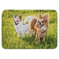 Pets@Heart Barkley 30-Inch x 42-Inch Chihuahuas Door Mat