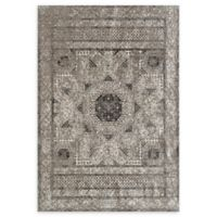 Amer Cambridge Transitional 2' x 3'3 Area Rug in Grey