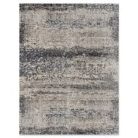 Amer Rugs Cambridge Transitional Woven 7'10 x 10'10 Area Rug in Silver