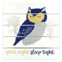 Linden Ave 12-Inch Square Good Night Sleep Tight Wood Plank Artwork