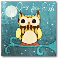 """Courtside Market Hoot Hoot """"O is for Owl"""" 16-Inch Square Canvas Wall Art"""