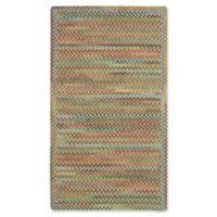 Capel Rugs Kill Devil Hill 2' x 3' Dusty Multicolor Accent Rug