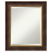 Veneto 21-Inch x 25-Inch Rectangular Medium Bathroom Wall Mirror in Distressed Black