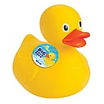 Toysmith Big Bath Rubber Duck in Yellow