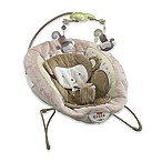 Fisher-Price® My Little SnugaMonkey Deluxe Bouncer