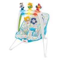 Fisher-Price® Musical Friends Bouncer