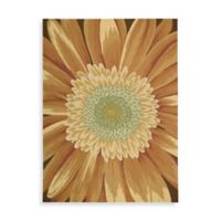 Nourison Fantasy Daisy 3-Foot 6-Inch x 5-Foot 6-Inch Room Size Rug