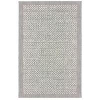 Miami Check Border 2-Foot 7-Inch x 4-Foot 2-Inch Indoor/Outdoor Accent Rug in Grey