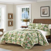 Tommy Bahama Monte Verde Quilt T Natural