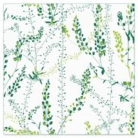 Wall Vision Bladranker Botanical Wallpaper in Green
