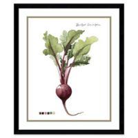Amanti Art Root Vegetable I Beet 21-Inch x 25-Inch Framed Wall Art