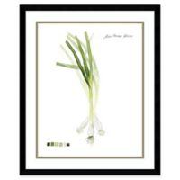 Amanti Art Root Vegetable I Onion 21-Inch x 25-Inch Framed Wall Art