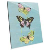 Astra Art Butterflies 14-Inch x 11-Inch Acrylic Wall Art