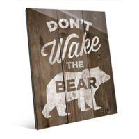 "Astra Art ""Don't Wake the Bear"" 11-Inch x 14-Inch Acrylic Wall Art"