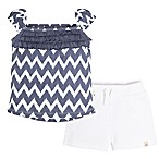 Burt's Bees Baby® Size 6-9M 2-Piece Chevron T-Shirt and Short Set in Blue/White