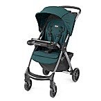 Chicco® Mini Bravo® Plus Stroller in Eucalyptus