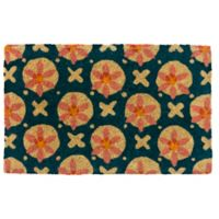 "Entryways Purdie 22"" x 35"" Multicolor Coir Door Mat"