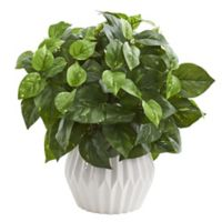 Nearly Natural 16-Inch Pothos Plant in White Ceramic Vase