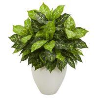 Nearly Natural 28-Inch Dieffenbachia in White Vase