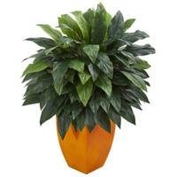 Nearly Natural 44-Inch Cordyline in Orange Planter