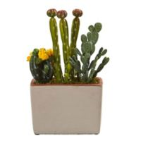 Nearly Natural 14-Inch Mixed Cactus in Stucco Textured Planter