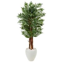 Nearly Natural 5-Foot Parlor Palm Tree in White Oval Planter
