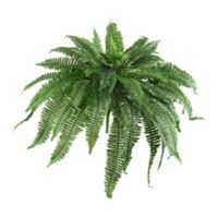 Nearly Natural 48-Inch Boston Fern (Set of 2)