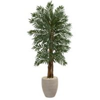 Nearly Natural 5-Foot Parlor Palm Tree in Sand Textured Oval Planter