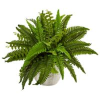 Nearly Natural 14-Inch Boston Fern in White Embossed Planter