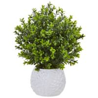 Nearly Natural 17-Inch Boxwood Plant in White Embossed Pot