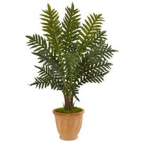 Nearly Natural 4-Foot Evergreen Plant in Terra Cotta Planter