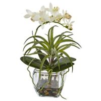 Nearly Natural 10-Inch Orchid and Succulent Arrangement in Glass Vase