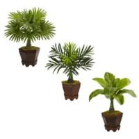 Nearly Natural 16.5-Inch Assorted Mini Palm Trees in Octagonal Wood Planters (Set of 3)
